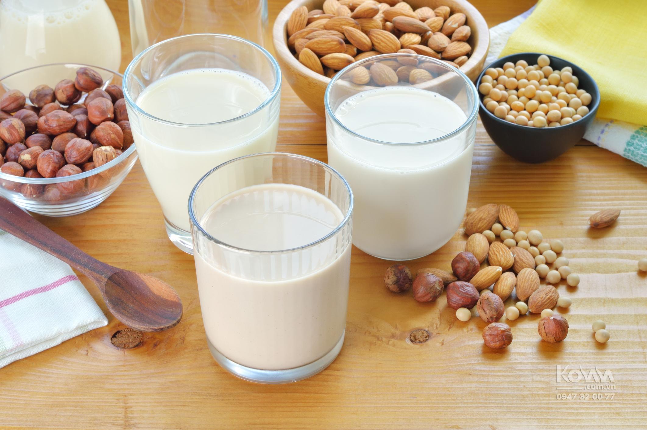 có nên dùng sữa hạt cho bé, cách làm sữa hạt, làm sữa từ quả óc chó