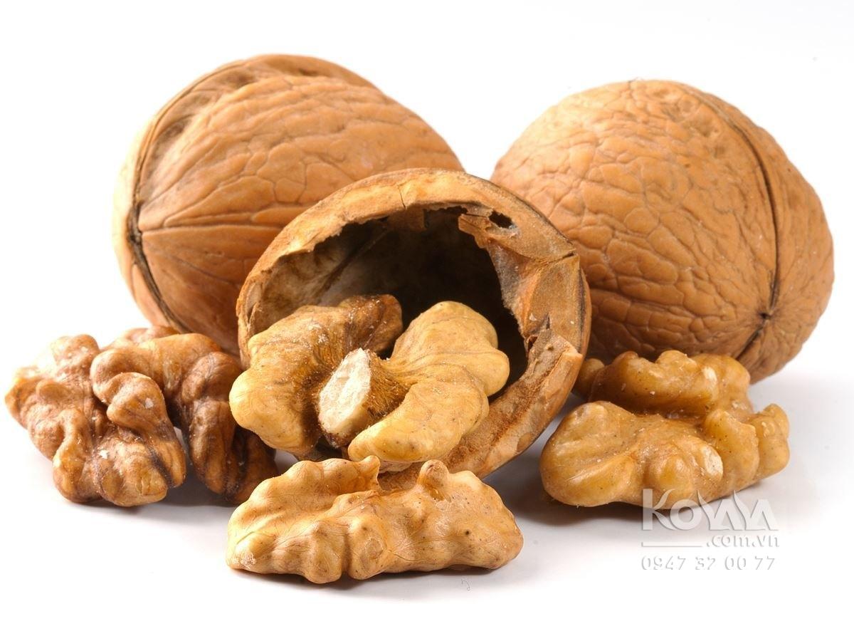 ăn quả óc chó mỗi ngày giúp giảm cân hạ cholesterol, quả óc chó mỹ, hạt óc chó nhập khẩu, quả óc chó bán ở đâu, giá 1kg quả óc chó, ăn quả óc chó có tác dụng gì